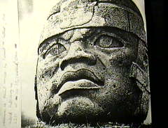 collosolafroolmec1.jpg